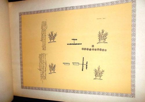 Códices indígenas de algunos pueblos del Marquesado del Valle de Oaxaca : pl.