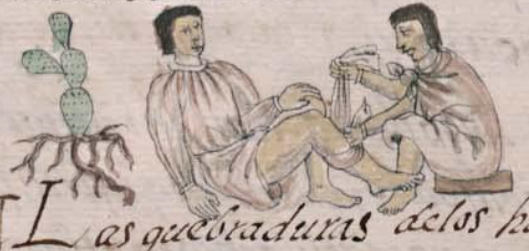 Códice Florentino, lib. X, fol. 111v et 112r