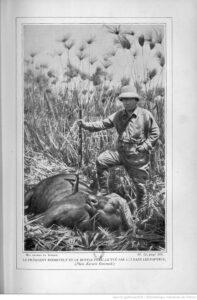 Mes chasses en Afrique / Théodore Roosevelt