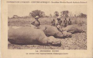 La chasse aux hippopotames (Oubangui-Chari)