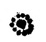 L'attribut alt de cette image est vide, son nom de fichier est Pousse_1-1.png.